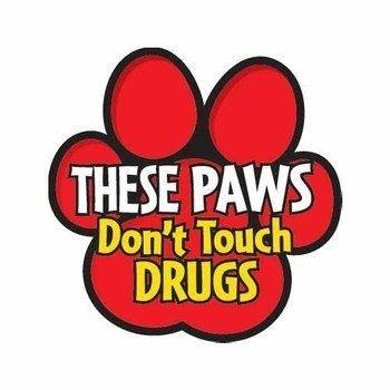Red paw print saying THESE PAWS Don't Touch DRUGS